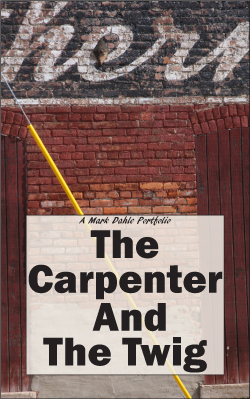 cover of The Carpenter And The Twig